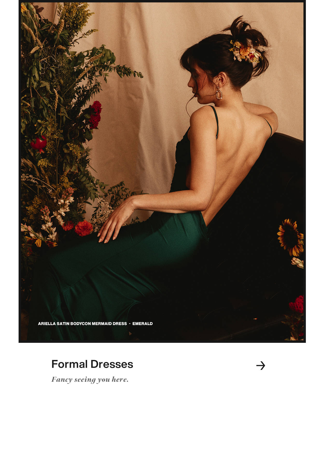 Formal Dresses: Fancy seeing you here.