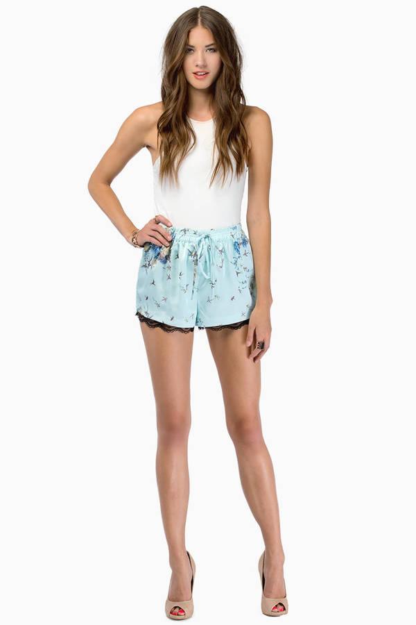 Brie Lane Shorts