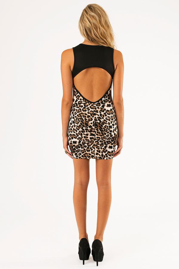 Strip Of Wild Dress